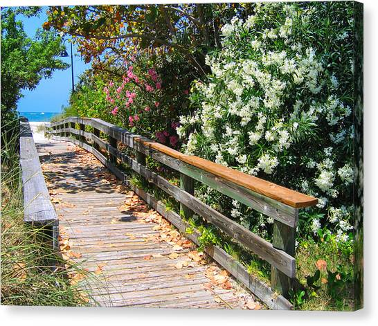 Pathway To Beach Canvas Print