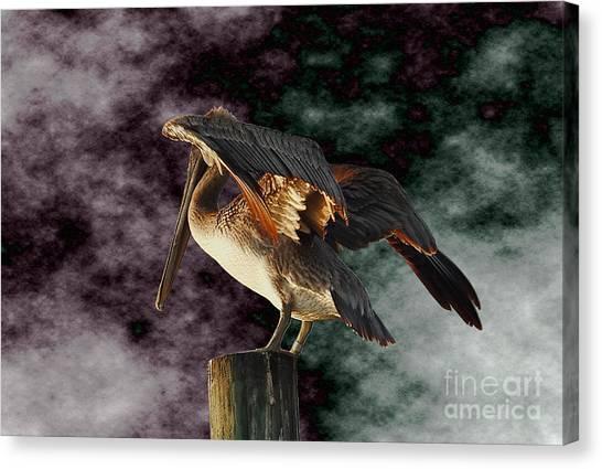Pelican On Post Canvas Print
