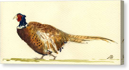 Pheasants Canvas Print - Pheasant by Juan  Bosco