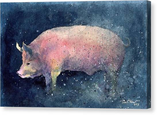 Pig Canvas Print by Tim Oliver