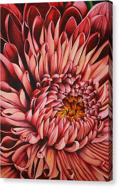Prisma Colored Pencil Canvas Print - Pink Mum by Bruce Bley