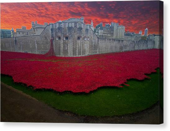 Poppies Tower Of London Canvas Print