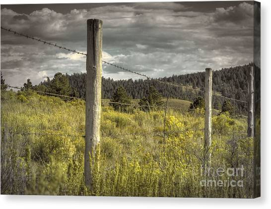 Prairie Fence Canvas Print