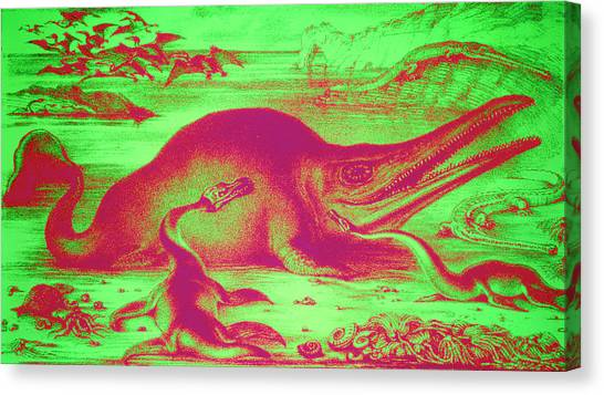 Pterodactyls Canvas Print - Prehistoric Marine Life by Sheila Terry/science Photo Library