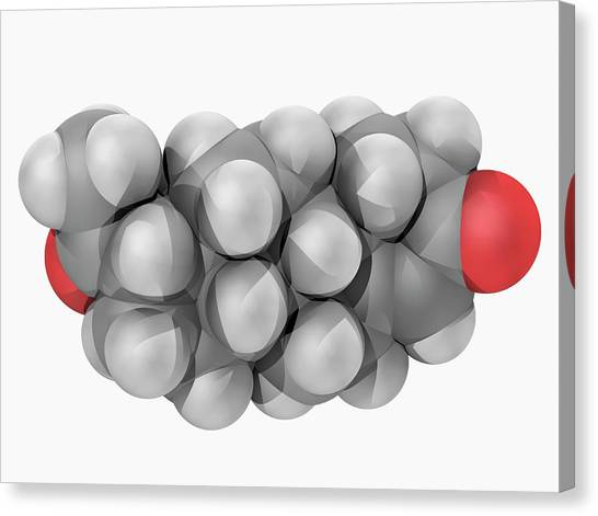Progesterone Hormone Molecule Canvas Print by Laguna Design/science Photo Library