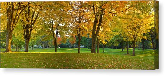 Fallen Leaf Canvas Print - Public Park In Autumn Colors, Gresham by Panoramic Images