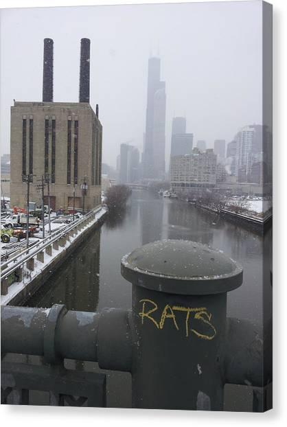 Rats Canvas Print