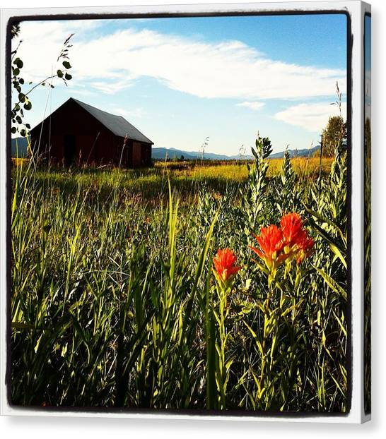Dirt Road Canvas Print - Red Barn by Meghan at FireBonnet Art