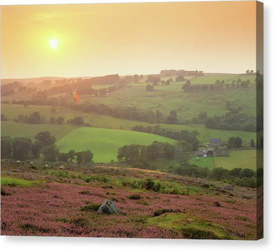Scotch Canvas Print - Rural Landscape by Simon Fraser/science Photo Library