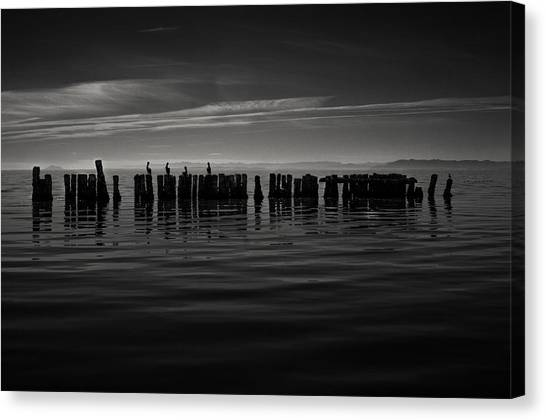 Salton Sea Piles Canvas Print