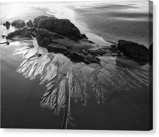 Sand Traces Canvas Print