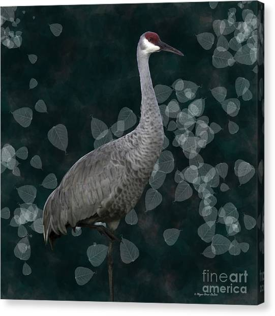 Sandhill Crane On Leaves Canvas Print