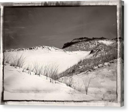 Sandy Neck Dunes Canvas Print