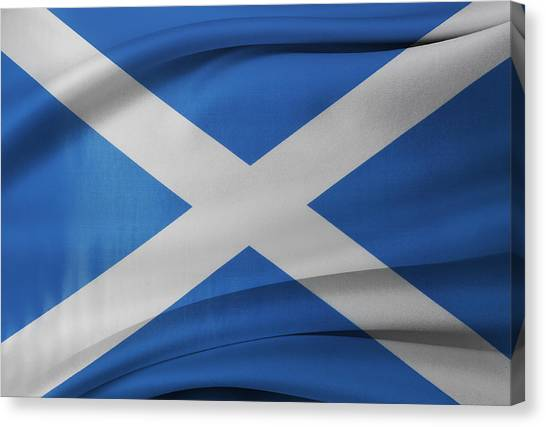 Scottish Folds Canvas Print - Scottish Flag by Les Cunliffe