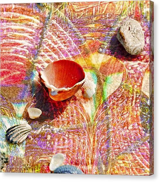 Sea Shells In A Row Canvas Print