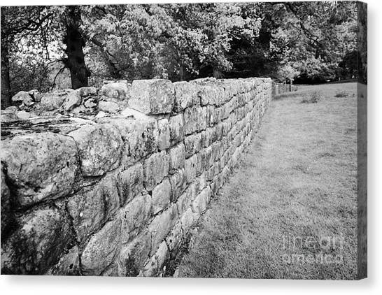 Hadrian canvas print section of hadrians wall at low brunton northumberland uk built by the