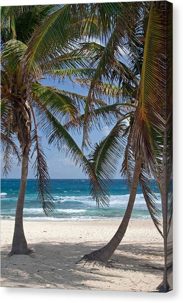 Serene Caribbean Beach  Canvas Print
