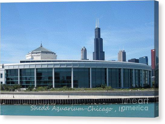 Shedd Aquarium Canvas Print