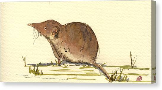 Mice Canvas Print - Shrew by Juan  Bosco