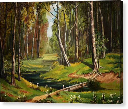 Silence Of The Forest Canvas Print