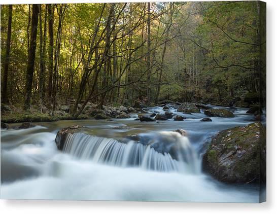 Smoky Mountain Stream Canvas Print by Doug McPherson