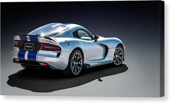 Vipers Canvas Print - Snake Bit by Douglas Pittman