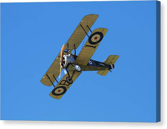 Biplane Canvas Print - Sopwith Camel - Wwi Fighter Plane by David Wall