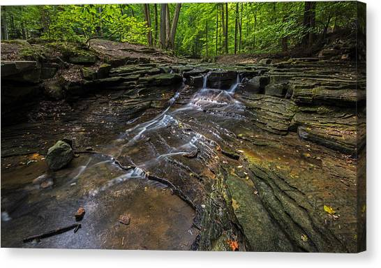 South Chagrin Reservation Canvas Print