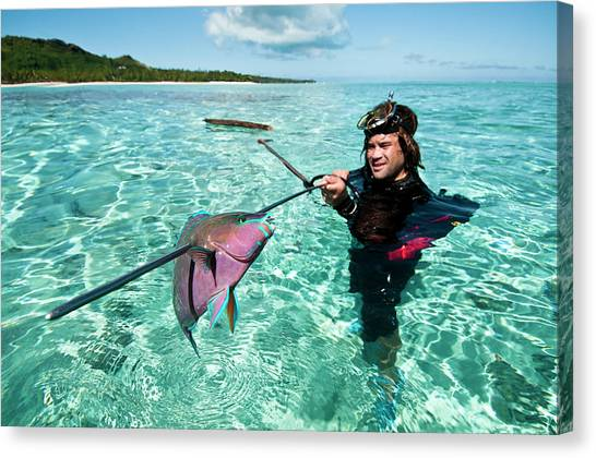 Parrot Fish Canvas Print - Spear Fisherman With A Freshly Caught by Thomas Pickard