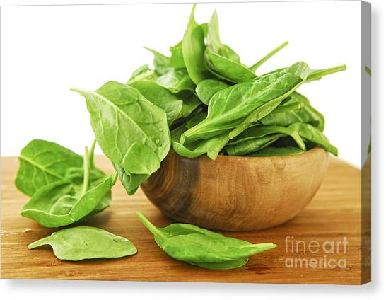 Spinach Canvas Print - Spinach by Elena Elisseeva