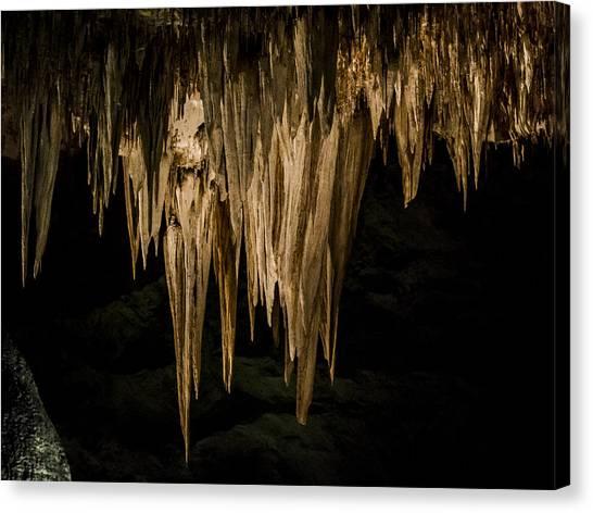 Carlsbad Caverns Canvas Print - Stalactites At Carlsbad by Jean Noren