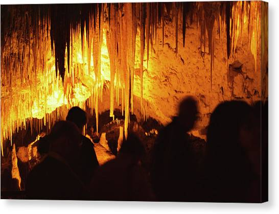 Stalactites Canvas Print - Stalactites by Pasquale Sorrentino/science Photo Library