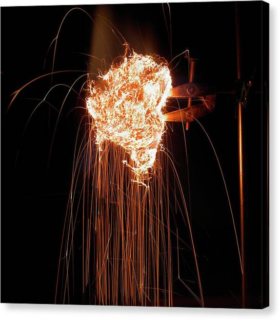 Matting Canvas Print - Steel Wool Burning In Air by Science Photo Library
