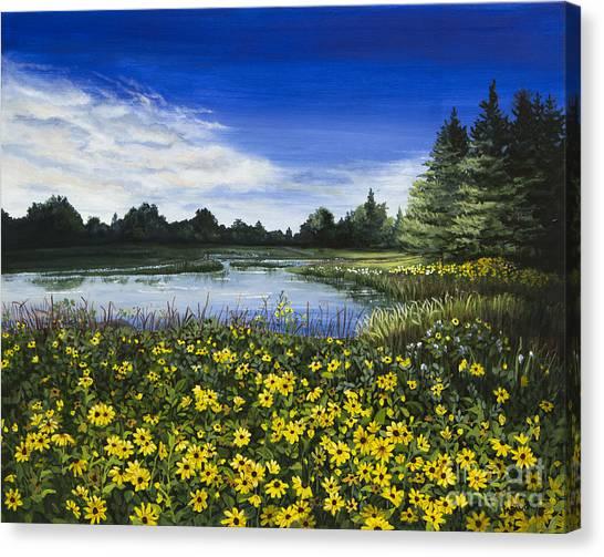Summer Susans Canvas Print