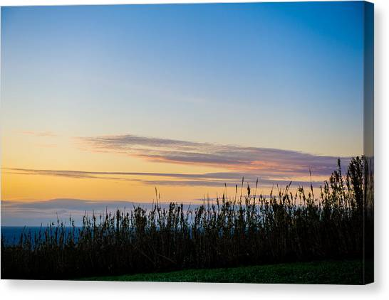 Sunset Over The Field Canvas Print