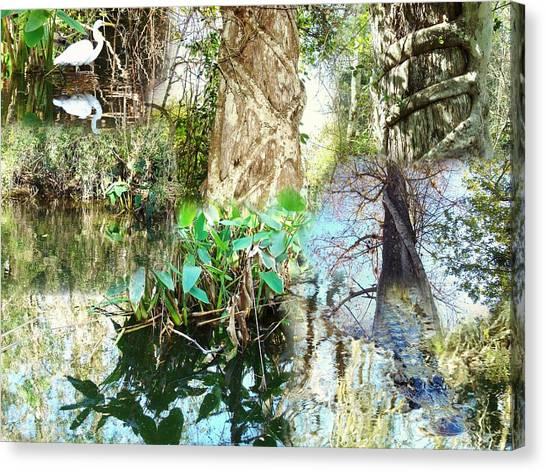 Swamp Life Canvas Print by Van Ness