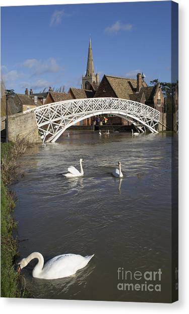 Swans At The Chinese Bridge Canvas Print by Keith Douglas