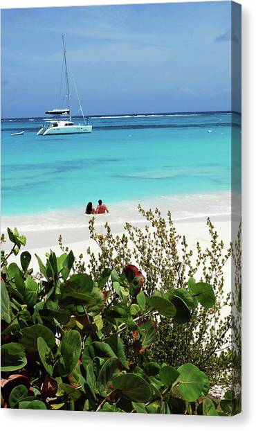 Catamarans Canvas Print - Swimming The Waters Of Prickly Pear by Lynn Seldon