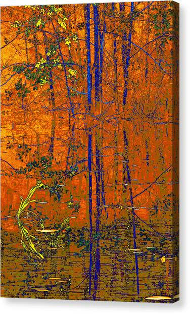 Tapestry Canvas Print by Steve Warnstaff