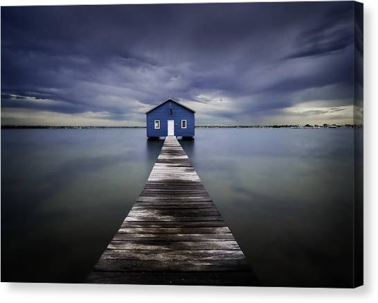 Swans Canvas Print - The Blue Boatshed by Leah Kennedy
