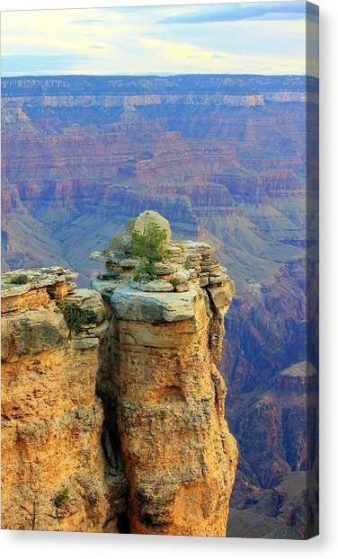 The Canyon Balanced Rock Canvas Print by Douglas Miller