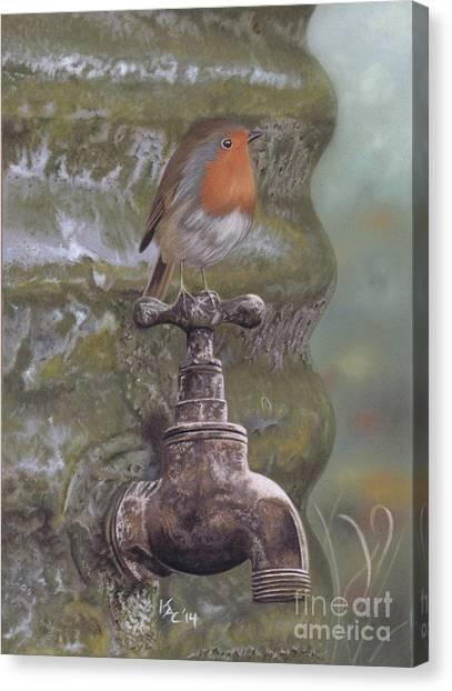 The Constant Gardener Canvas Print