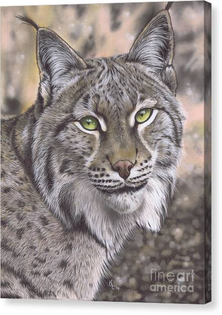 The Lynx Effect Canvas Print