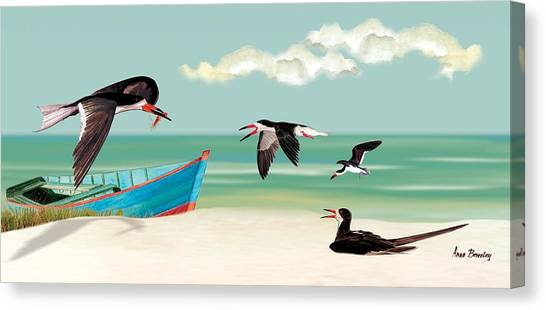 The Skimmers Of Margaritaville Canvas Print