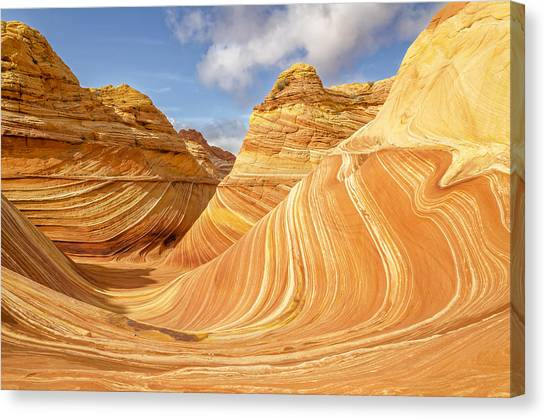 Arizona Coyotes Canvas Print - The Wave by Dustin  LeFevre