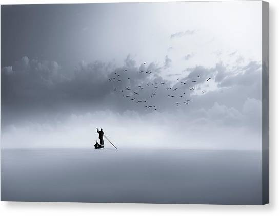 Sea Birds Canvas Print - The Way Back by Mohammed Sattar