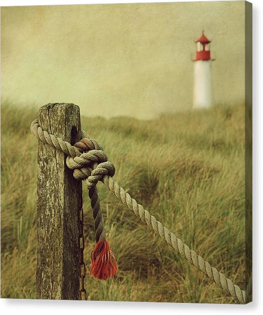 Grass Canvas Print - To The Lighthouse by Hannes Cmarits