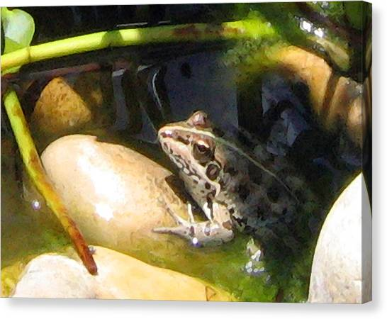 Canvas Print featuring the digital art Toad by Helene U Taylor