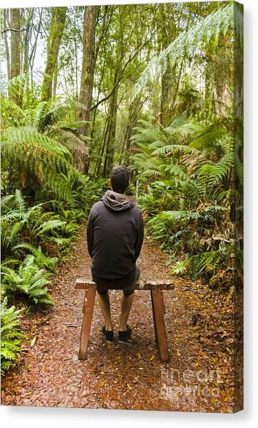 Daydream Canvas Print - Travel Man Sitting In A Green Lush Fern Forest by Jorgo Photography - Wall Art Gallery