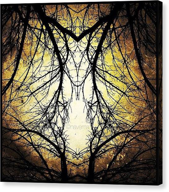 Geometric Canvas Print - Tree Veins by Natasha Marco